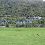 Photo of Punakaiki Resort