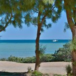 Denham Seaside Tourist Village의 사진