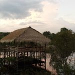 Tariri Amazon Lodge resmi