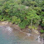 Foto van Copa de Arbol Beach and Rainforest Resort