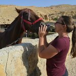 Patricia and one of the dearest horses on earth