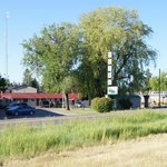 Photo de The Meandering Moose Motel
