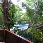 Playa Hermosa Bosque del Mar Hotel의 사진