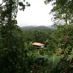 Misty Mountains Tropical Rainforest Retreatの写真