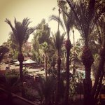 Foto Golden Tulip Farah Marrakech