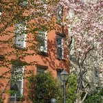 The Heart of New York Culture - Private Tours