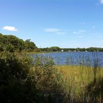 Scenic Lake Tarpon from the Trail