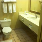 Foto di Holiday Inn Express Waynesboro - Rt. 340