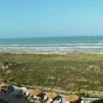 Hilton Garden Inn South Padre Island의 사진