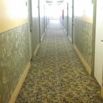 Φωτογραφία: Vagabond Inn Convention Center Long Beach