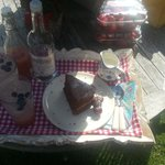 Tea and homemade cake in the sunshine x