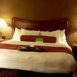 La Quinta Inn & Suites Minneapolis-Minnetonka照片