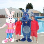 Sparky & naarky visit the pool