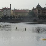 Archibald At the Charles Bridge Foto