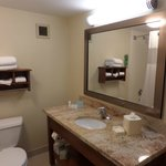 Φωτογραφία: Hampton Inn Chicago-Carol Stream