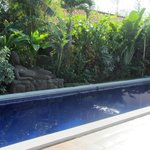 Photo de Balinea Villa - Rooms & Spa