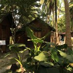 Island Vinnies Tropical Beach Cabana Foto