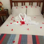 Room 6 - Swan Towels w/ Red Flowers
