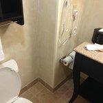 Φωτογραφία: Hampton Inn & Suites Dallas-Arlington North