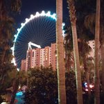 Foto di Hilton Grand Vacations at the Flamingo