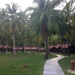Lagoon facing huts