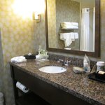 Φωτογραφία: Holiday Inn Express Hotel & Suites Knoxville-Farragut