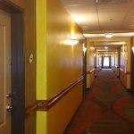 ภาพถ่ายของ La Quinta Inn & Suites Houston Bush Intl Airport E