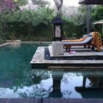 pool in garden villa