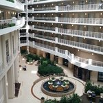 Embassy Suites Alexandria-Old Town照片