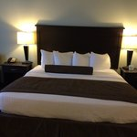 Foto BEST WESTERN PLUS Chain of Lakes Inn & Suites