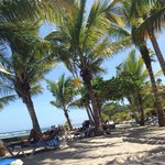 Photo de Barcelo Capella Beach Resort
