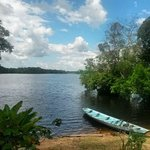 Foto de Amazon Tarzan Lodge