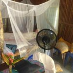Bedroom and fan in the jungle cabana