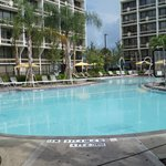 Sheraton Lake Buena Vista Resort resmi