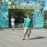 Photo of New York Aquarium