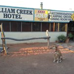 Foto van William Creek Hotel