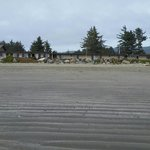 Foto de Crescent Beach Motel