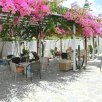 Cyclades Hotel and Studios의 사진