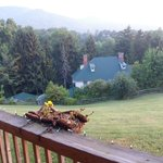 Honey Hill Asheville Inn and Cabins의 사진