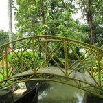 nice bridge in the homestay