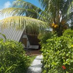 Foto de La Digue Island Lodge