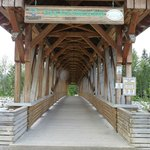 Kicking Horse Pedestrian Bridge.