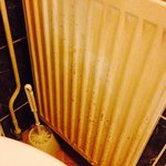 Urine splash stains on radiator