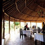Masai Mara - Osero Lodge