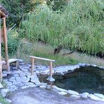 Breitenbush Hot Springs Resort Cabins照片
