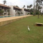 Photo de Haridra Resort & Spa