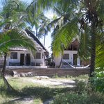 Pweza Beach Restaurant, Bar and Bungalows Foto