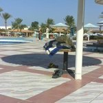 Foto Sonesta Pharaoh Beach Resort Hurghada