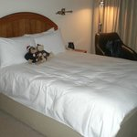 389 Bed