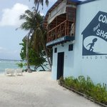 Cokes Surf Shack의 사진